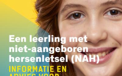 Niet-aangeboren hersenletsel (NAH)